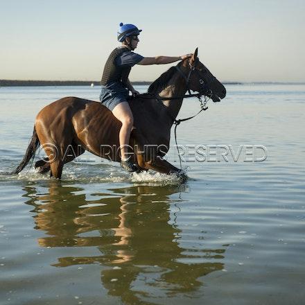 Botany Bay, Audacious Choice_06-04-16, Sharon Chapman_0077