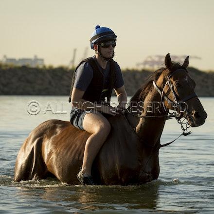 Botany Bay, Audacious Choice_06-04-16, Sharon Chapman_0091