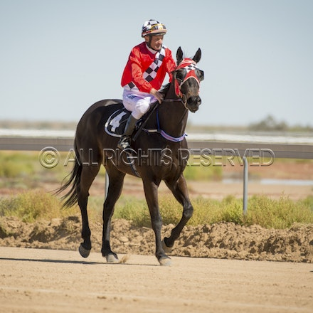 Race 1, Naytellrhi World, David Rewald_27-08-16, Betoota_0009