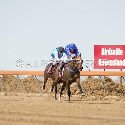 Race 1, Nordic Red, Clayton Gallagher_04-09-16, Birdsville, WIN_552