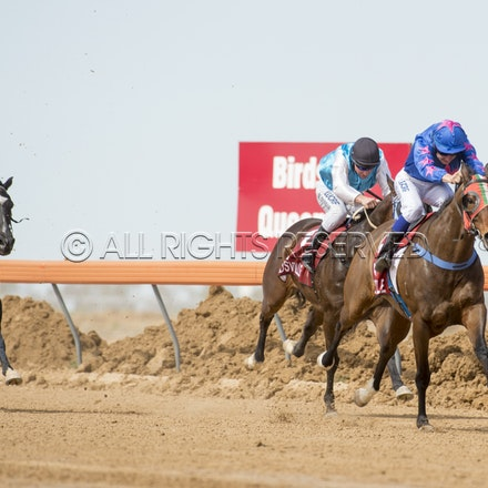 Race 1, Nordic Red, Clayton Gallagher_04-09-16, Birdsville, WIN_553