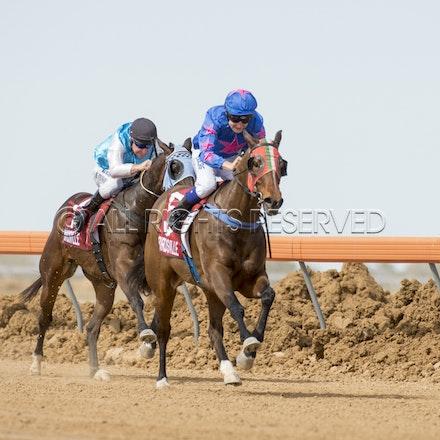 Race 1, Nordic Red, Clayton Gallagher_04-09-16, Birdsville, WIN_554
