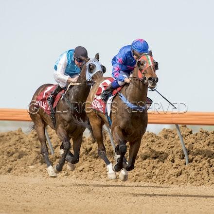 Race 1, Nordic Red, Clayton Gallagher_04-09-16, Birdsville, WIN_556