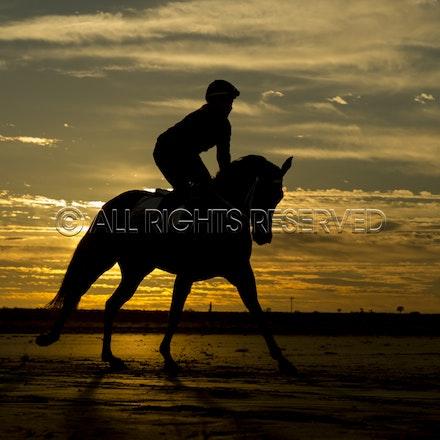 Trackwork, Sunrise, Lupo Nero, Kristie Peoples_03-09-16, Birdsville,_077