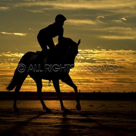 Trackwork, Sunrise, Lupo Nero, Kristie Peoples_03-09-16, Birdsville,_074