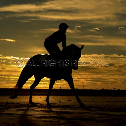 Trackwork, Sunrise, Lupo Nero, Kristie Peoples_03-09-16, Birdsville,_076