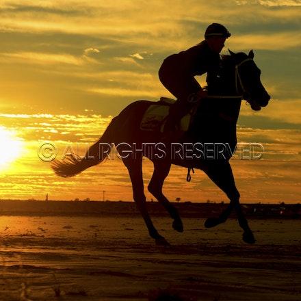 Trackwork, Sunrise, Lupo Nero, Kristie Peoples_03-09-16, Birdsville,_080