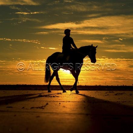 Trackwork, Sunrise, Lupo Nero, Kristie Peoples_03-09-16, Birdsville,_082