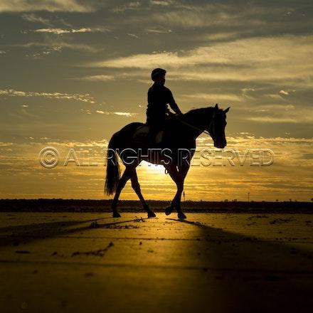 Trackwork, Sunrise, Lupo Nero, Kristie Peoples_03-09-16, Birdsville,_083