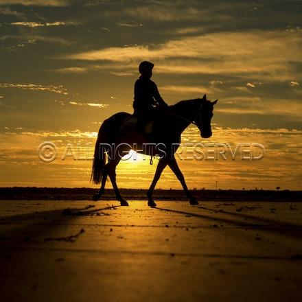 Trackwork, Sunrise, Lupo Nero, Kristie Peoples_03-09-16, Birdsville,_086