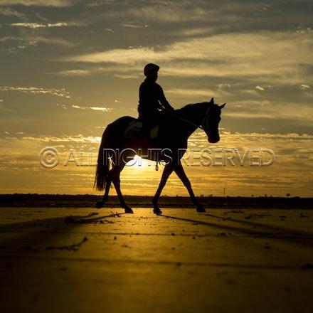 Trackwork, Sunrise, Lupo Nero, Kristie Peoples_03-09-16, Birdsville,_087