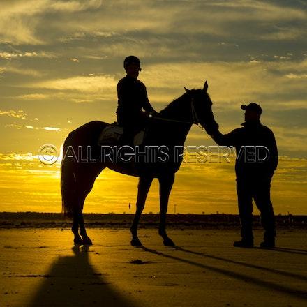 Trackwork, Sunrise, Lupo Nero, Kristie Peoples_03-09-16, Birdsville,_090