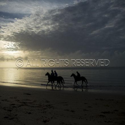 Balnarring Beach, General_18-11-16_054