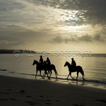Balnarring Beach, General_18-11-16_059