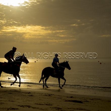 Balnarring Beach, General_18-11-16_065