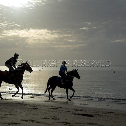 Balnarring Beach, General_18-11-16_066