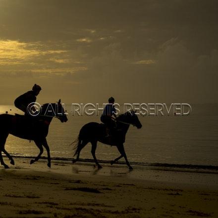 Balnarring Beach, General_18-11-16_067