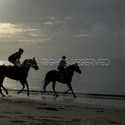 Balnarring Beach, General_18-11-16_068