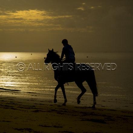 Balnarring Beach, General_18-11-16_071