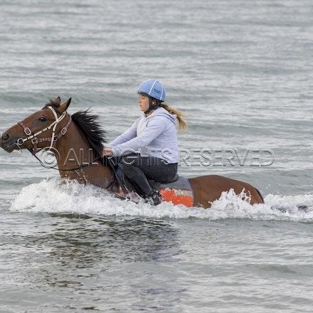 Balnarring Beach, Is Walsh, Malua Racing_25-11-16, Sharon Chapman_046