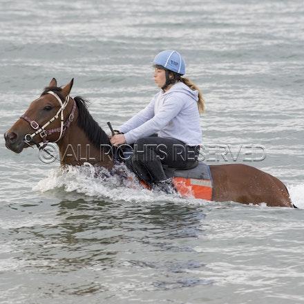 Balnarring Beach, Is Walsh, Malua Racing_25-11-16, Sharon Chapman_047