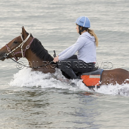 Balnarring Beach, Is Walsh, Malua Racing_25-11-16, Sharon Chapman_050