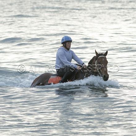 Balnarring Beach, Is Walsh, Malua Racing_25-11-16, Sharon Chapman_052
