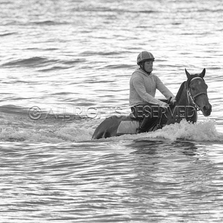 Balnarring Beach, Is Walsh, Malua Racing_25-11-16, Sharon Chapman_053