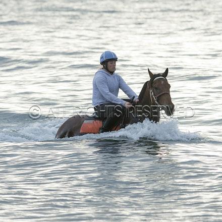 Balnarring Beach, Is Walsh, Malua Racing_25-11-16, Sharon Chapman_054