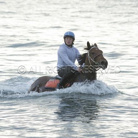 Balnarring Beach, Is Walsh, Malua Racing_25-11-16, Sharon Chapman_056