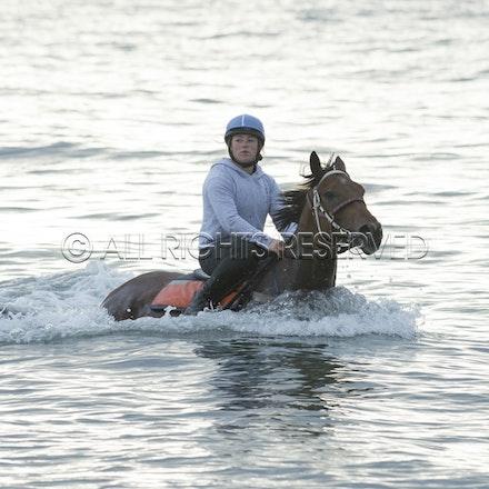 Balnarring Beach, Is Walsh, Malua Racing_25-11-16, Sharon Chapman_057
