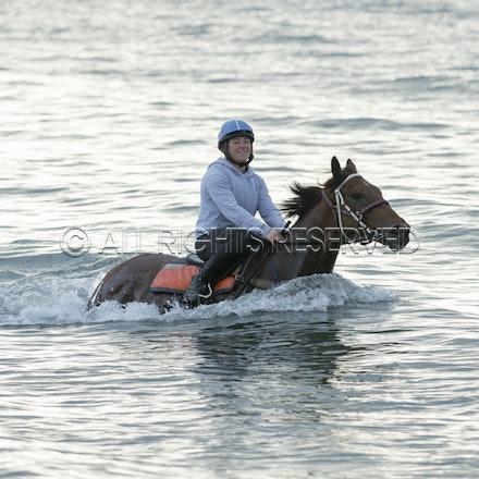 Balnarring Beach, Is Walsh, Malua Racing_25-11-16, Sharon Chapman_059