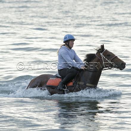Balnarring Beach, Is Walsh, Malua Racing_25-11-16, Sharon Chapman_061