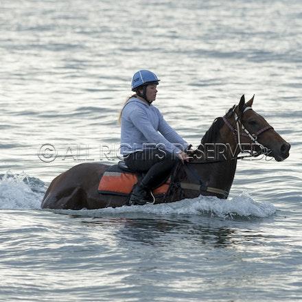 Balnarring Beach, Is Walsh, Malua Racing_25-11-16, Sharon Chapman_062
