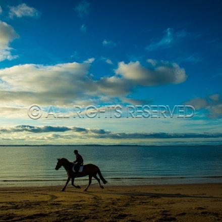 Balnarring Beach, General_29-11-16, Sharon Chapman_0122