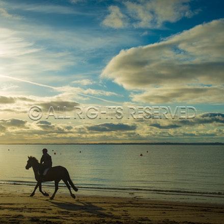 Balnarring Beach, General_29-11-16, Sharon Chapman_0123