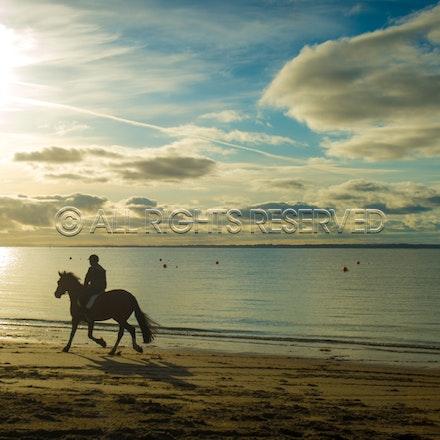 Balnarring Beach, General_29-11-16, Sharon Chapman_0124