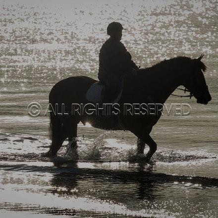 Balnarring Beach, General_29-11-16, Sharon Chapman_0129