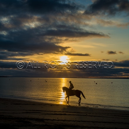 Balnarring Beach, Kerry Edwards_29-11-16, Sharon Chapman_0006