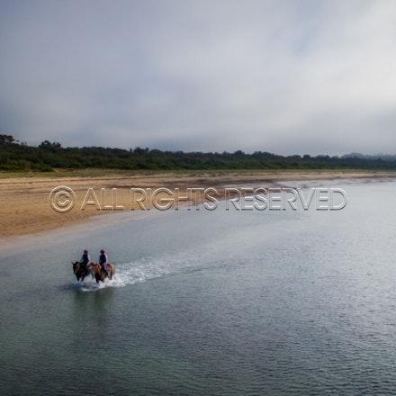 Balnarring Beach, Irish Ivy & Sparkles, Charlotte Littlefield, Aerial_17-11-16_081