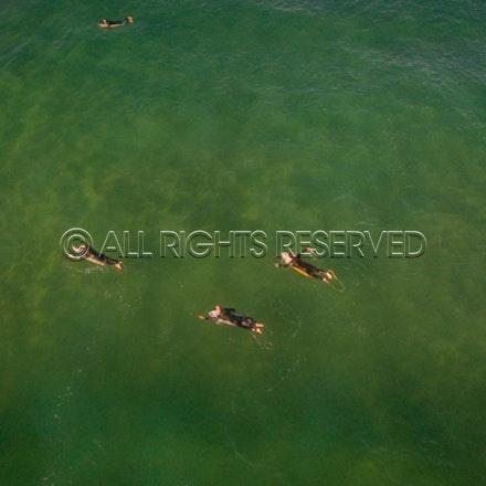 Gunnamatta Surf Beach, Rye_22-01-17, Mark Lee_0008