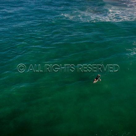 Gunnamatta Surf Beach, Rye_22-01-17, Mark Lee_0011
