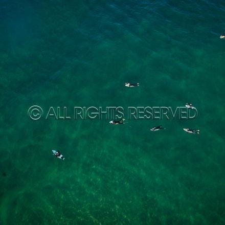 Gunnamatta Surf Beach, Rye_22-01-17, Mark Lee_0014