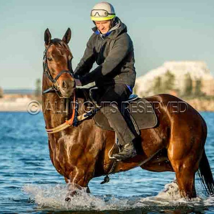 Winx & Foxplay, Botany Bay - 20 August 2017