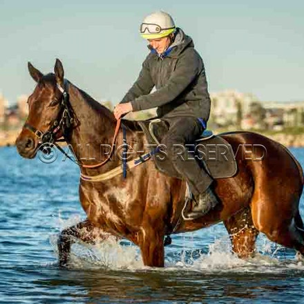 Winx, Ben Cadden, Botany Bay_20-08-17, Sharon Lee Chapman_0003