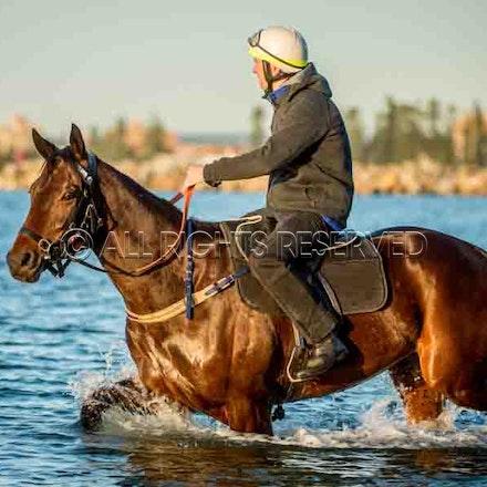 Winx, Ben Cadden, Botany Bay_20-08-17, Sharon Lee Chapman_0005