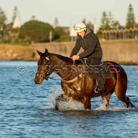 Winx, Ben Cadden, Botany Bay_20-08-17, Sharon Lee Chapman_0007