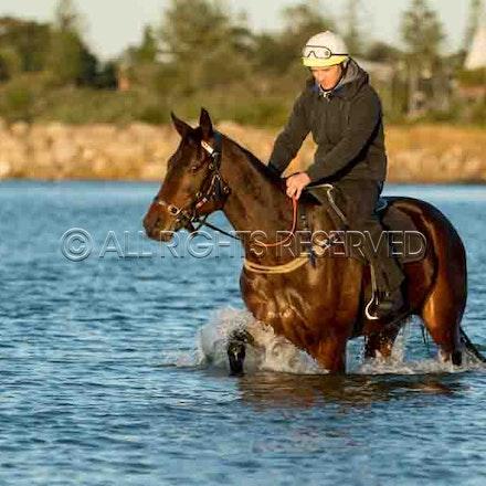 Winx, Ben Cadden, Botany Bay_20-08-17, Sharon Lee Chapman_0008