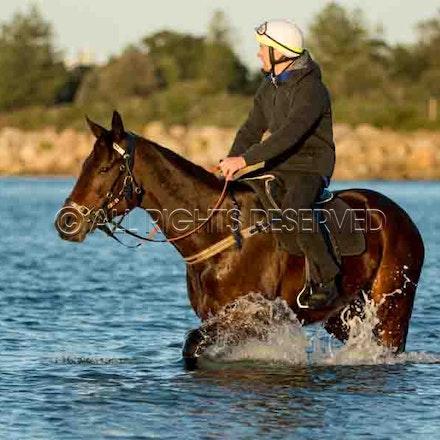 Winx, Ben Cadden, Botany Bay_20-08-17, Sharon Lee Chapman_0009