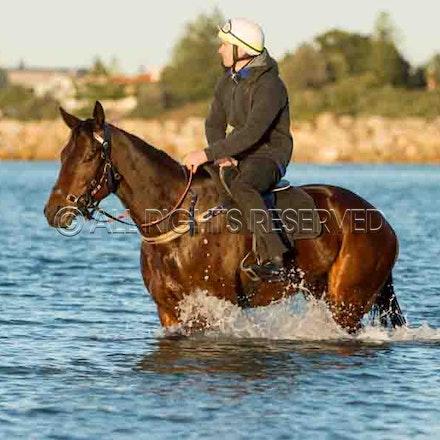 Winx, Ben Cadden, Botany Bay_20-08-17, Sharon Lee Chapman_0010